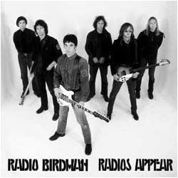 radio_birdman_radios_appear